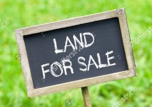 stock-photo-land-for-sale-338868602-sq